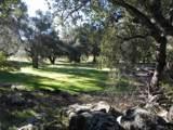 10605 Burrell Way - Photo 12