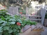1373 Marron Valley Rd - Photo 9