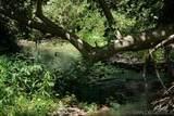 40376 Sandia Creek Dr - Photo 22