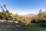 1810 Wild Lilac Trl - Photo 11