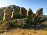 0000 Honey Springs Rd - Photo 1