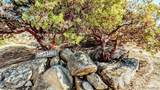 20555 Lost Trail - Photo 39