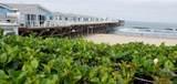 4667 Ocean Blvd - Photo 12