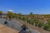 31725 Rancho Amigos - Photo 28