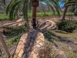 14490 Ridge Ranch Rd - Photo 53