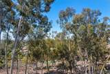 11131 Caminito Vista Serena - Photo 35