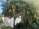 2173 Villa Flores Glen - Photo 28