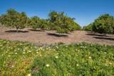 6124 El Camino Del Norte - Photo 51