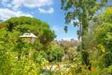 8940 Caminito Verano - Photo 27