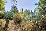 5407 Baja Drive - Photo 21