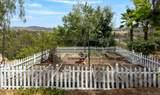 17509 Rancho Del Rio - Photo 48