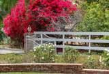 17509 Rancho Del Rio - Photo 62
