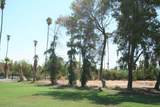1010 Palm Canyon Dr - Photo 9