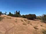 000 Mariposa Ridge - Photo 10