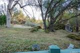 36956 Deer Path Circle - Photo 23