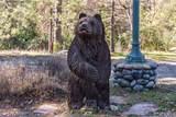 36956 Deer Path Circle - Photo 24