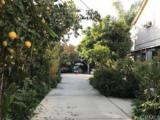 298 Phillips Boulevard - Photo 2