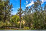 1711 Lomas Privadas Drive - Photo 19