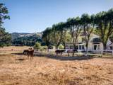 335 Cypress Mountain Drive - Photo 4