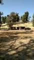 34917 Wildwood Canyon Road - Photo 13