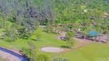 6550 Cottage Hill Dr. Drive - Photo 5