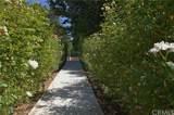 36165 Wildwood Canyon Road - Photo 10