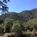 0 California Hwy 38 - Photo 21