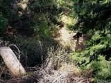 0 Hook Creek - Photo 4