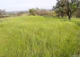 0 Valley Quail - Photo 1