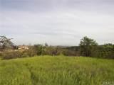 0 Valley Quail - Photo 6
