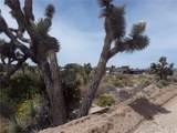 0 Buena Vista - Photo 5