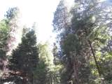 0 Mojave River - Photo 4