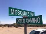0 Mesquite - Photo 13