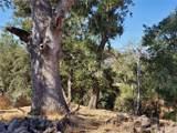 8820 Deer Trail - Photo 10