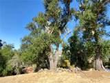 8820 Deer Trail - Photo 12