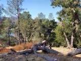 8820 Deer Trail - Photo 14