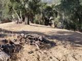 8820 Deer Trail - Photo 15