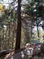 0 Lakeland View - Photo 11