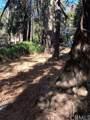 0 Lakeland View - Photo 12