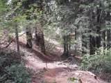 7413 Henness Ridge - Photo 5