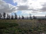 1615 Camino Mariposa - Photo 1
