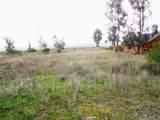 1615 Camino Mariposa - Photo 9