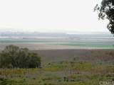 1615 Camino Mariposa - Photo 16