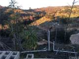 646 Rice Canyon - Photo 4