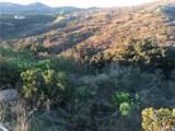 646 Rice Canyon - Photo 6