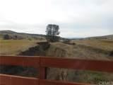 76755 Ranchita Canyon - Photo 1