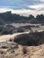 5 Willow Canyon - Photo 4