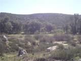 5 Willow Canyon - Photo 9