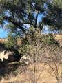 5 Willow Canyon - Photo 10