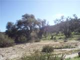 2 Willow Canyon - Photo 4